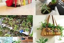 Eco decoração