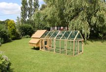 Maggie's Hen House Range / An elegant hen house with external nest box. Options for Long -Legged Maggie's house. Suitable for 6, 12 or 24 birds. Various run size options
