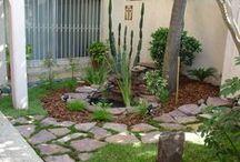 Fonte e Jardim