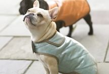 Sewing Patterns for Dog Jackets