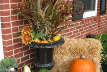Fall in Love with Fall / Fall decorating with mums, kales, grasses and so much more!