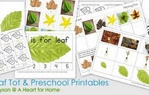MFW Kindergarten - Leaf
