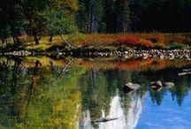 Parco Nazionale Dello Yosemite