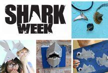 Shark Science
