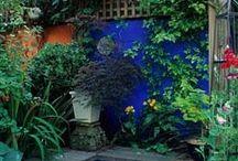 Garden of MOROCCO