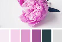 palette colori abbinamenti