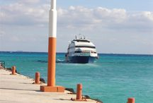 Cozumel ❤️ / My second home... / by Linda Petersen