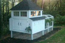 裏庭の鶏小屋