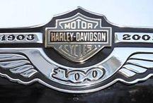 Harley 100