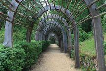 Ideal garden ideas