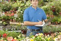Nursery ideas / Plant arrangements, retail ideas