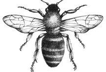bees knees +