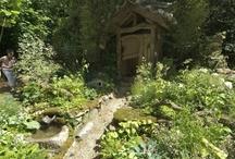 in my garden I'd love...