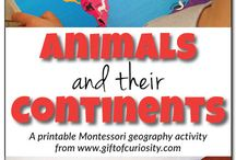 animals and continents