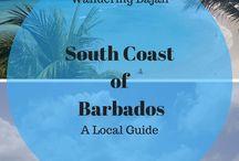 Your Caribbean Adventures / 0