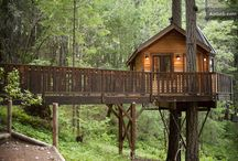 Life in a Tree (Amazing Tree Houses) / Your next great adventure should be up in the greatest tree dwellings of America. Find your dream tree today. / by BuzzFeed Partner