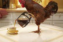 Got Coffee? / by Susan Gilbert