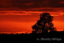 Sunsets (My Photos) / The #sky is a canvas that paints some of the most beautiful scenes as the #sun goes down. Wonderful #sunsets. More can be found at http://www.shadyridgephotography.com