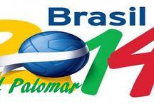Ciudad Palomar - Mundial Brasil 2014 / Fotos y Pines del Mundial Brasil 2014 y de nuestra Selección Argentina.