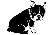 cachorros desenhos