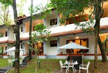 Aranya - Standard Room / Air conditioned single rooms with bathrooms attached built on two floors. Each room is elegantly furnished with sit outs on the ground floor and balconies on the floor above. Large windows look out at views of a lawn and a tree lined slope.