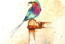 Oiseau sur robinet