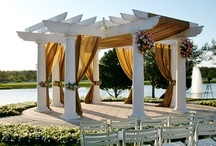 Orlando Wedding Harpist - Ceremony Photos / Orlando Harpist - Some of my favorite Central Florida wedding photos. Find more at www.orlandoharpist.com #Orlando #harpist