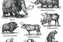 paleolithic animals