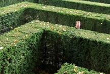Backyard labyrinth and mazes inspiration