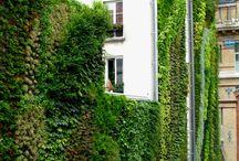 Landscape Design / Landscape design,design,landscaping,architecture,landscape architecture