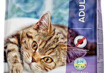 Katzenfutter / Katzen sind Feinschmecker und viele Katzenbesitzer fragen sich, was das richtige Katzenfutter für ihren Liebling ist. Ob Nassfutter oder Trockenfutter ist oft nicht nur eine Einstellungssache, sondern hängt auch von den Vorlieben der Katze ab. Wir haben bei unserem Futter eine hohe Akzeptanz mit gleichzeitig ausgezeichneter Qualität. Sprechen Sie uns gerne an.