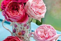 Lovely flowers :)