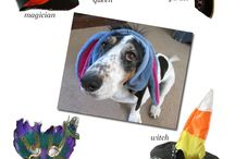 Costumes and dogs