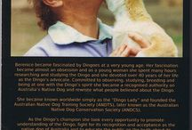 """For the Love of a Dingo / Photos from the book """"For the Love of a Dingo"""""""