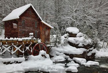 Winter / by Beverly Kennedy