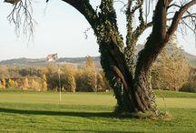 Golf Club I Fiordalisi / Golf Club I Fiordalisi - Faenza (Ravenna)