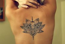 All things Lotus