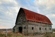 Barns , Sheds & more Barns  / by Ann Thurmond