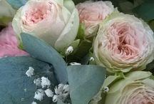 Les fleurs / Les fleurs & les plantes pour une nature romantique et apaisante