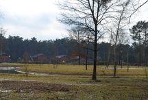 Park / Foto's van het park
