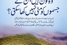 Islamic baten