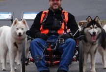 How to WooFDrive / This is where the WooFDriver tells all about the ways and the reasons to get involved with this creative and interactive Dog-Powered Lifestyle.