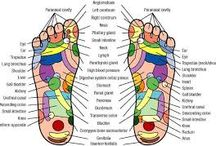 Reflexology / Reflexology is a gentle non-invasive therapy based on the principle that there are reflexes in the feet that correspond to every organ gland and system in the body. When you stimulate these reflexes deep healing and tranquil relaxation are experienced by the person getting reflexology.  Reflexology is especially good for joint mobilization, migraine, sinus, back problems, digestion, stress related conditions and anxiety.