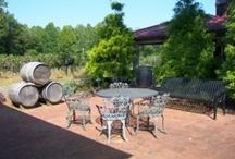 Area Vines & Wines