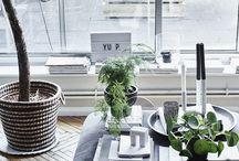Място за работа, място за забавление, място за живот / Стилистите Кейти и Илке са съквартирантки. Те работят от вкъщи и са разпределили пространството у дома, така че да отговаря перфектно на техните нужди - за работа, за почивка и за забавление. Виж как са организирали своето #мястозаживот с малко цвят, зеленина и мултифунцкионални мебели.