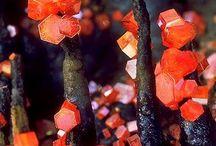 Rocks &Minerals... / The Wonderful World of Gems &Minerals...