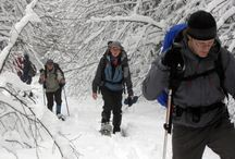 Snowshoeing / Explore the backcountry of the 1000 Islands