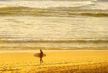 Bicho de Praia⛱ /  Beach and Waves... Não vivo sem!!❤️