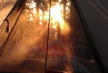 Camping- Tent, Truck, Gear, Helpful Tips / by Jeni Ainley Green