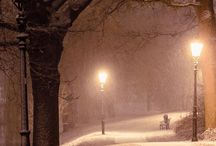 Příroda zima